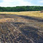 Pożar prasy do słomy w Olszewie (15) (12)