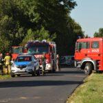 Cztery pożary w jedno popołudnie (11)