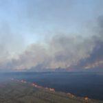 Spłonęło 20 hektarów zboża i kombajn (6)