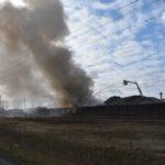 Pożar złomowiska w Przysiece Polskiej (11)