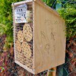 Światowy Dzień Pszczół w Śniatach (4)