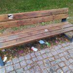 Śmieci na Placu Wolności (1)