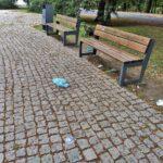 Śmieci na Placu Wolności (4)