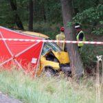 Tragiczny wypadek pomiędzy Lesznem i Osieczną (2)