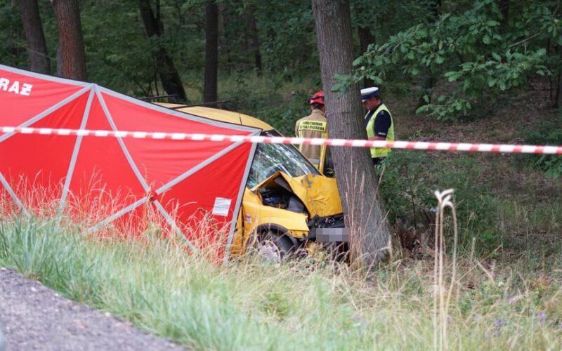 Tragiczny wypadek. Droga Osieczna – Leszno zablokowana! [ZDJĘCIA]